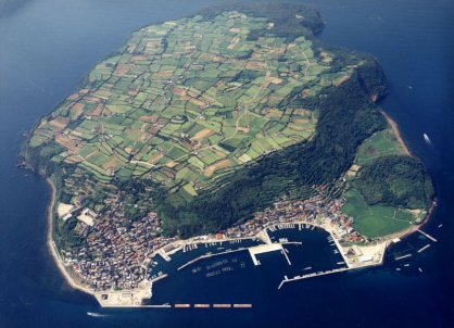 大島を上空から見た写真です。