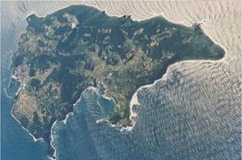 見島の航空写真、牛に見えます。
